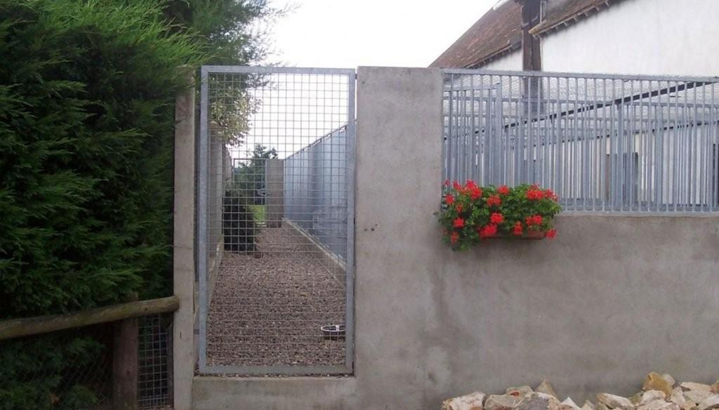 etang-des-chalands-pension-chien-canine-allier-saint-pourcain-gardiennage-3