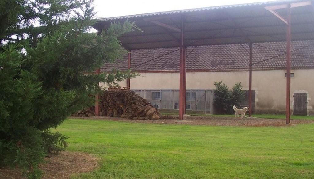 etang-des-chalands-pension-chien-canine-allier-saint-pourcain-gardiennage-5